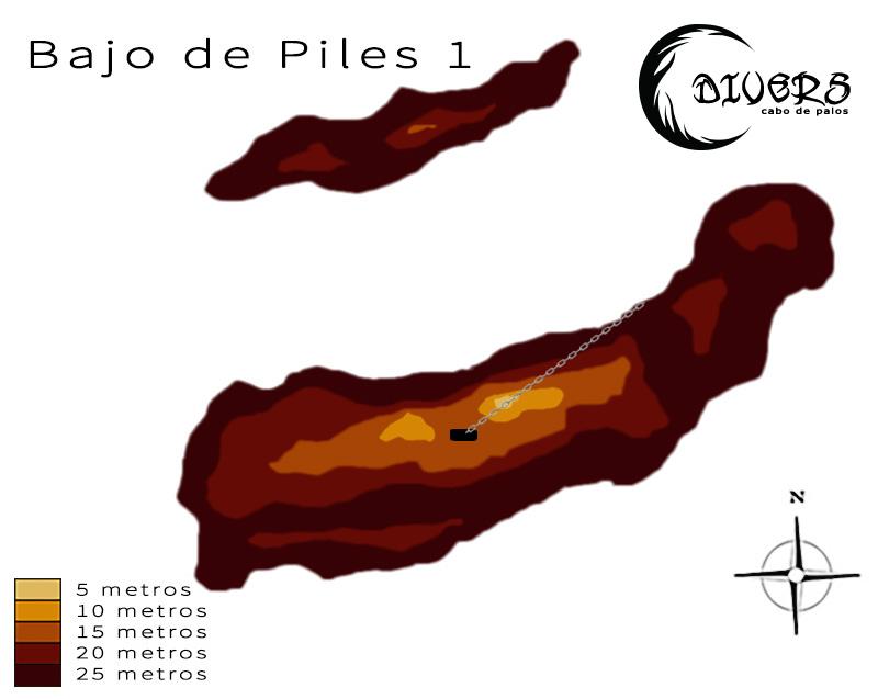 Bajo de Piles 1