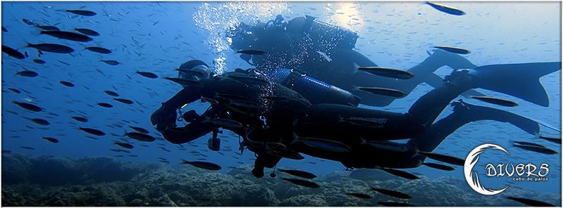 Winter Promotions on Divers Cabo de Palos