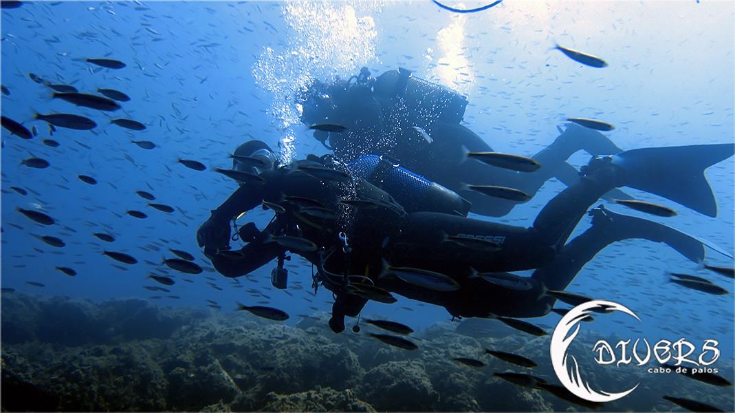 Sorteo de 10 inmersiones en Divers Cabo de Palos - 1 & 1/2 Aniversario