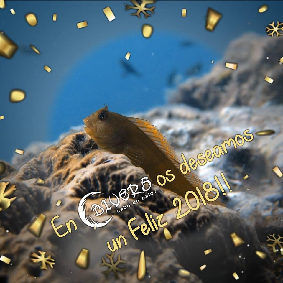 Divers Cabo de Palos os desea ¡Feliz Año 2018!
